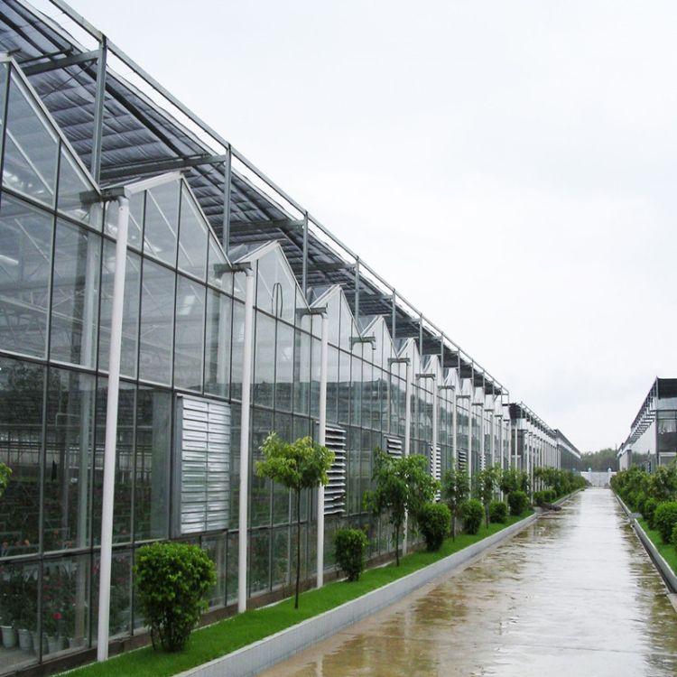 pc板智能玻璃温室大棚平方价格 日光阳光板智能玻璃温室大棚 金纳
