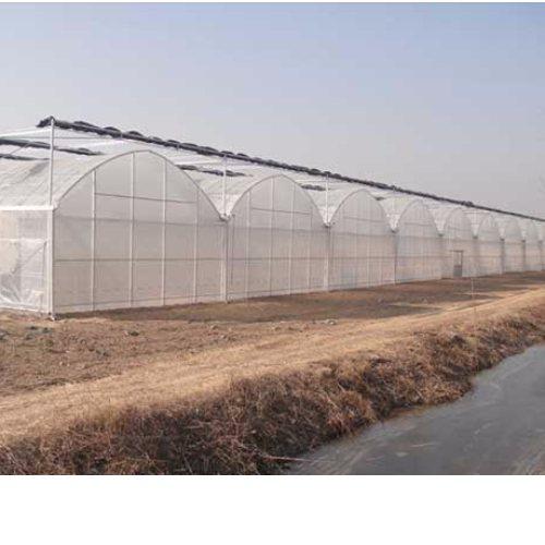 养殖玻璃连栋大棚报价 汉威温室 承建玻璃连栋大棚型号