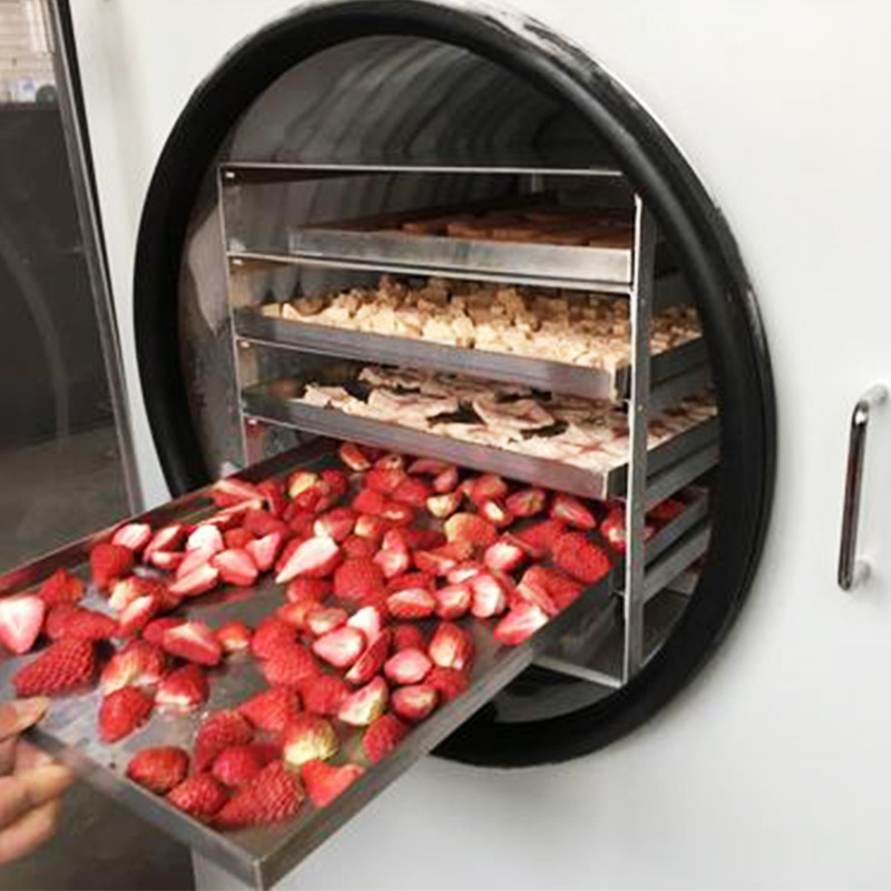 惠州水果低温真空冻干机水果低温真空冻干机厂家
