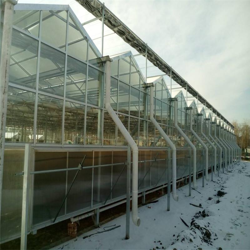 金纳 连栋日光玻璃温室大棚每平米造价