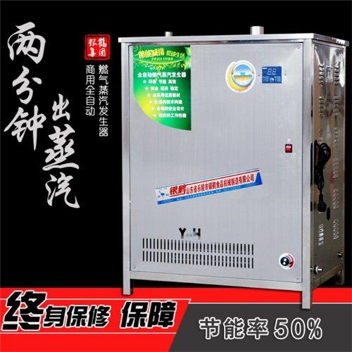 银鹤股份 燃气蒸汽发生器报价 蒸汽发生器 蒸包子蒸汽发生器