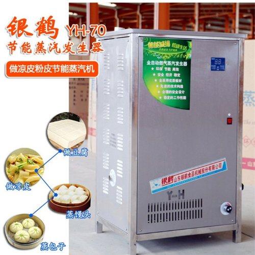 银鹤股份 小型蒸汽发生器 蒸汽发生器 做凉皮蒸汽发生器报价