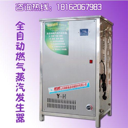 燃气蒸汽发生器 银鹤股份 小型蒸汽发生器报价 蒸包子蒸汽发生器