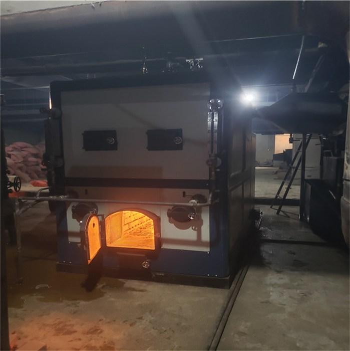 昭通1吨生物质锅炉安装团队 曲靖1吨生物质锅炉售后有保障 天成
