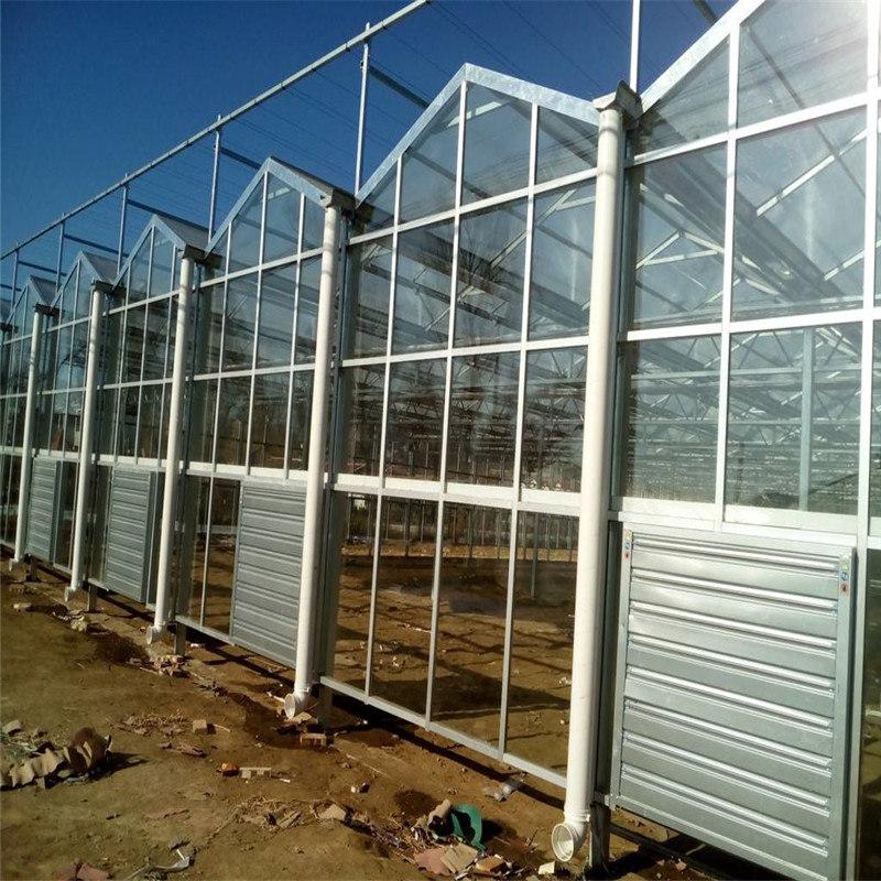 只找旭航 鸽子光伏温室大棚公司厂家 种菜育苗温室大棚