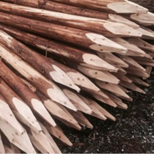 邳州杉木支撑杆施工 杨氏木业 常州杉木支撑杆费用