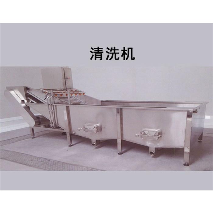 福莱克斯 叶类洗菜机品牌 洗菜机专业制造商 洗菜机直销