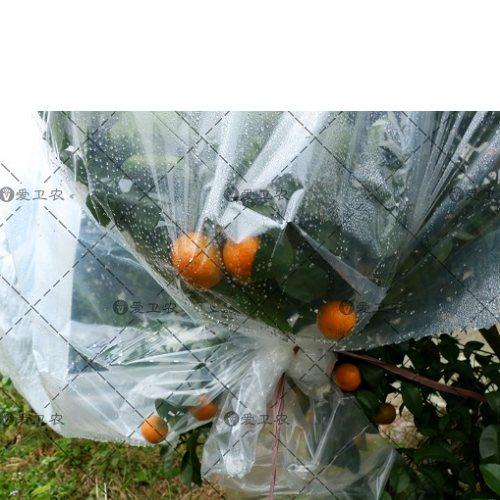 果园防冻布生产商 爱卫农 水管无纺防冻布规格