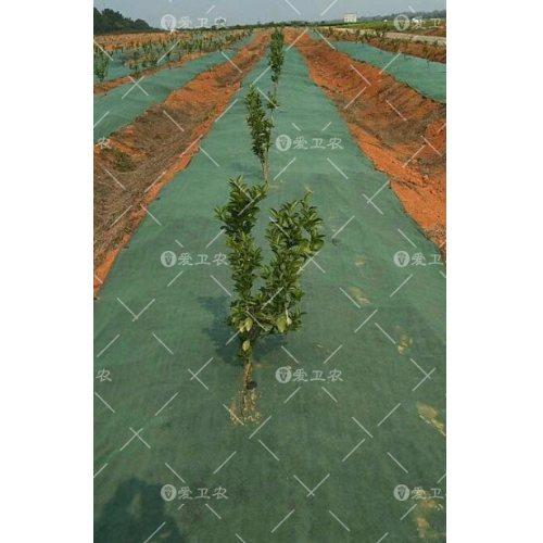 高密度防草地布多少钱一吨 爱卫农 果树防草地布