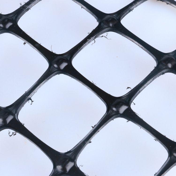 金达 双向拉伸塑料土工格栅 公路地基加固用土工格栅