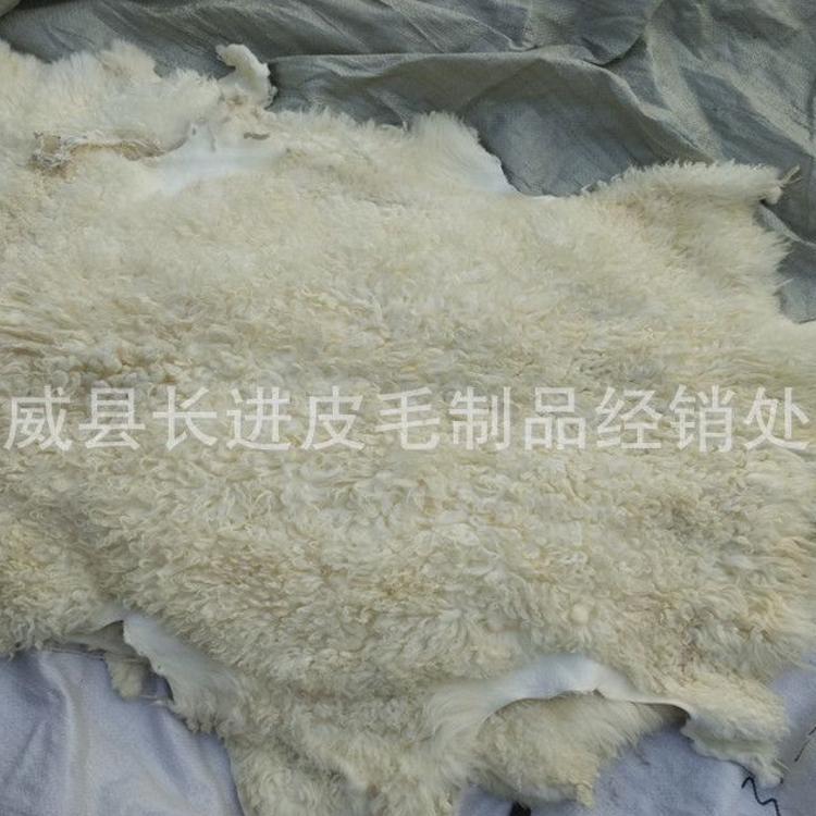 厂家供应羊羔皮二毛羊羔皮毛一体藏袍衣服材料蒙古袍子用品