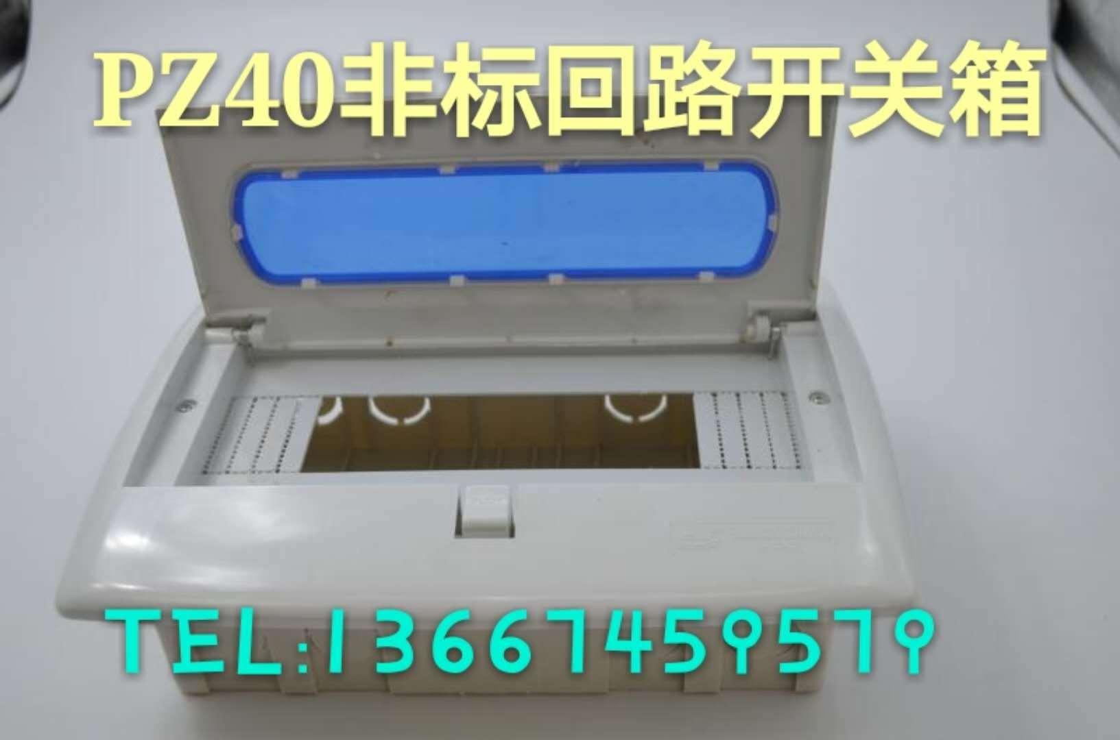 阻燃塑料PZ30PZ40照明配电箱、电表箱、回路箱户内配电箱、控制箱