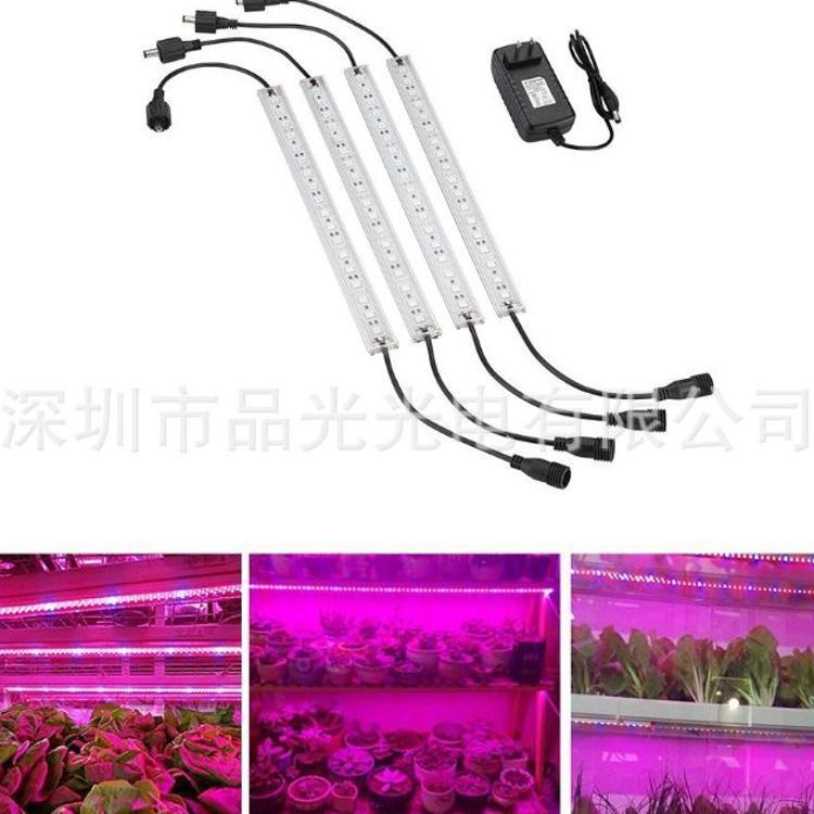 亚马逊爆款 植物灯条 植物硬灯条 5050植物灯 5:1植物灯 植物灯带