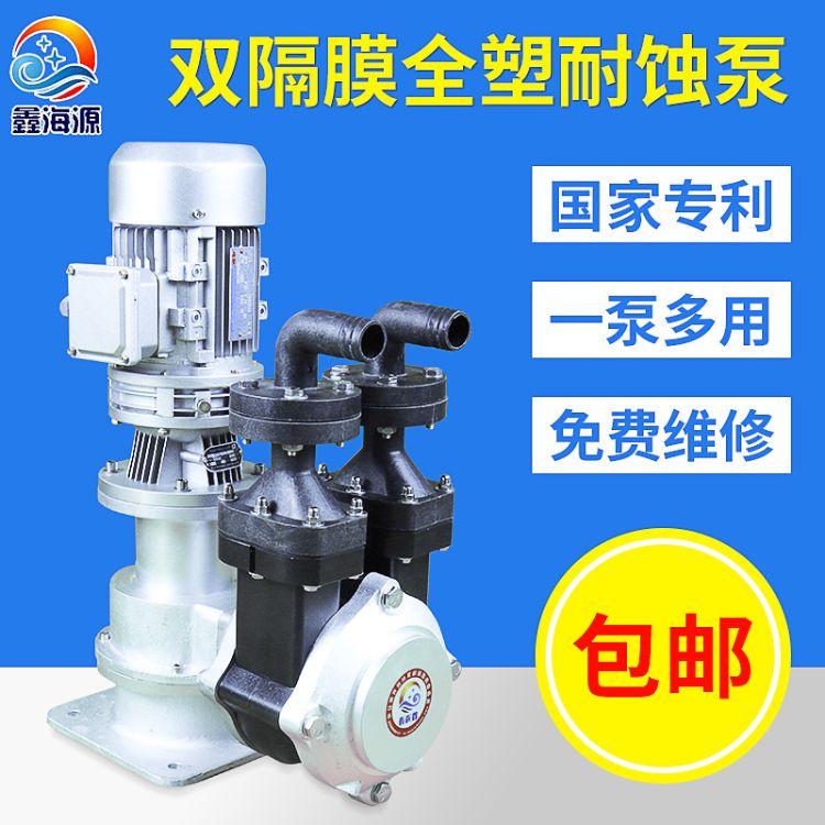 电动耐腐蚀双隔膜泵 立式隔膜计量泵 小型自吸加药泵