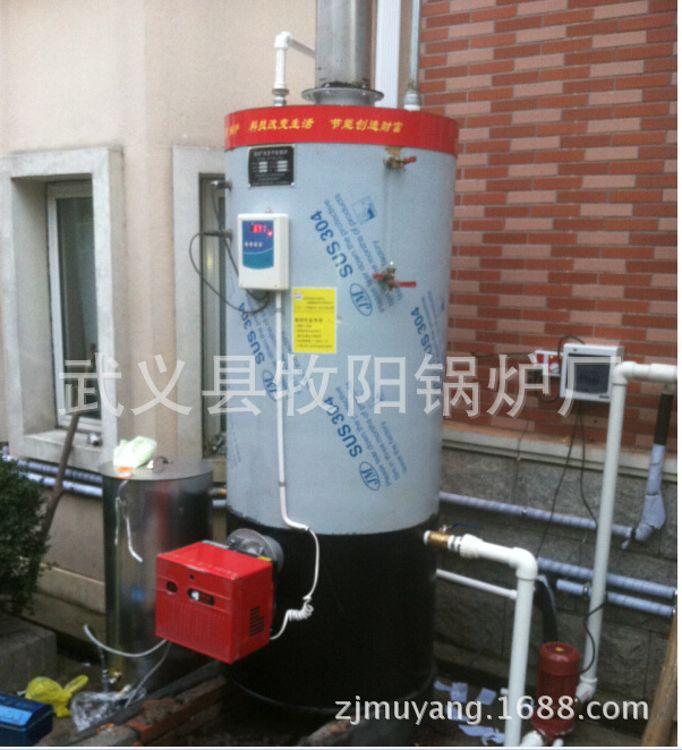 【牧阳牌】 环保节能燃气供暖锅炉 供暖蒸汽锅炉