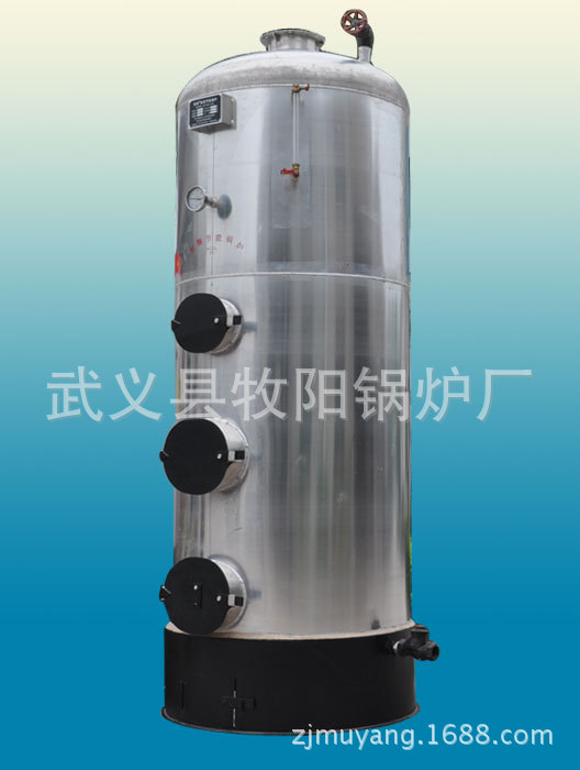 暖热水锅炉 节能食品蒸煮专用锅炉