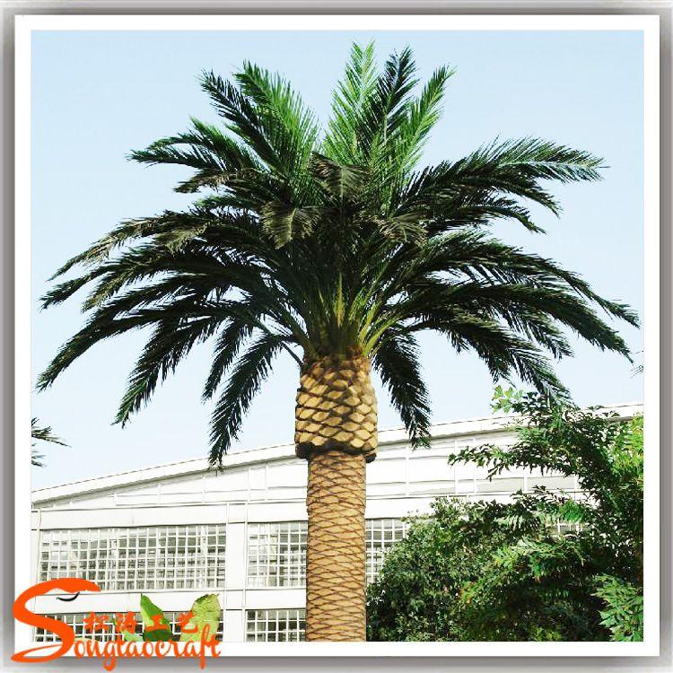 仿真海藻树中东加纳利海藻树酒店大厅装饰树仿真棕榈树仿真树厂家