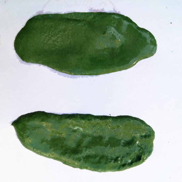 氧化铬绿  耐火级陶瓷玻璃专用  铬绿  氧化铬绿厂家现货供应批发
