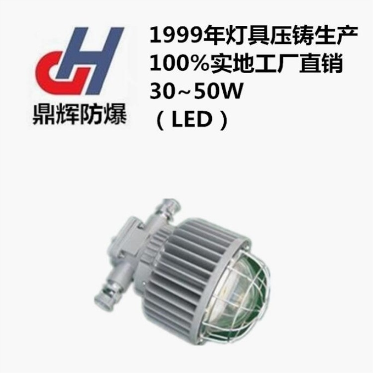 DGS50127L(A)隔爆型LED巷道灯 12W30W48W50W矿用灯具厂家供应