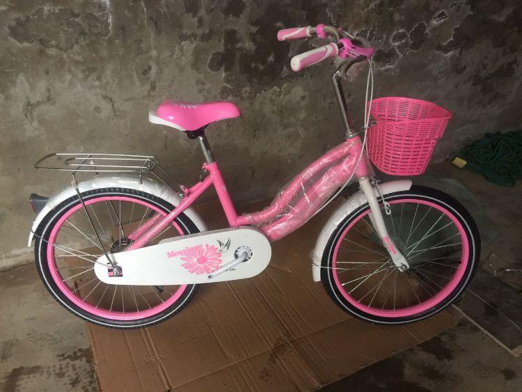 厂直推出新款20寸双弯公主车7岁9岁15岁儿童自行车20寸自行车