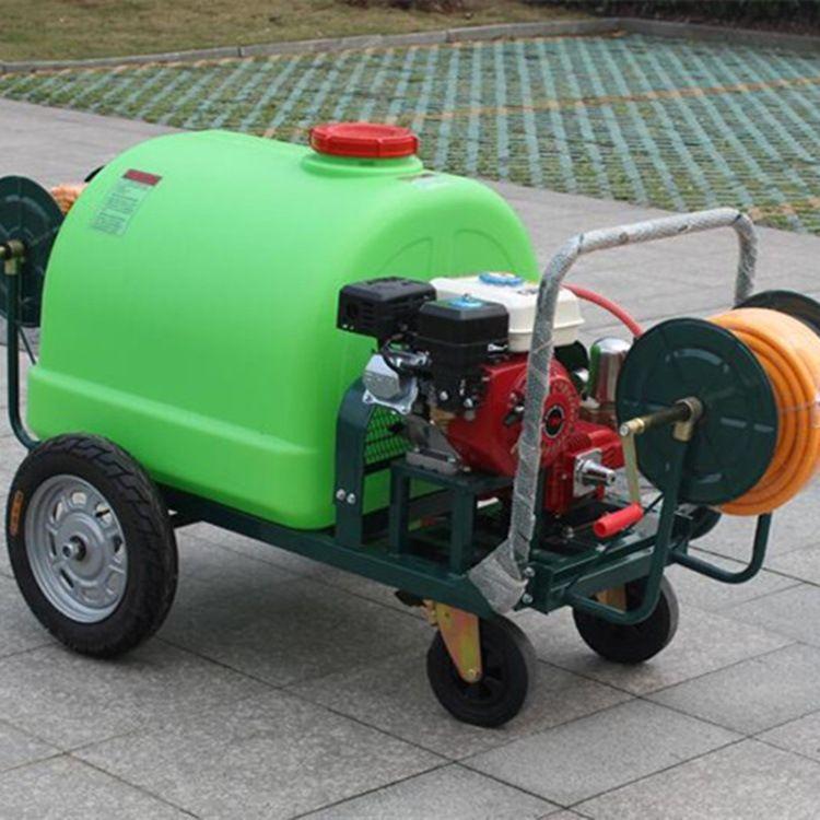 手推式园林打药机 农用高压泵喷雾器 200L防疫消毒喷雾机