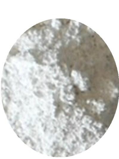 厂家热卖产品 煅烧贝壳粉 环保涂料用贝壳粉 货源充足