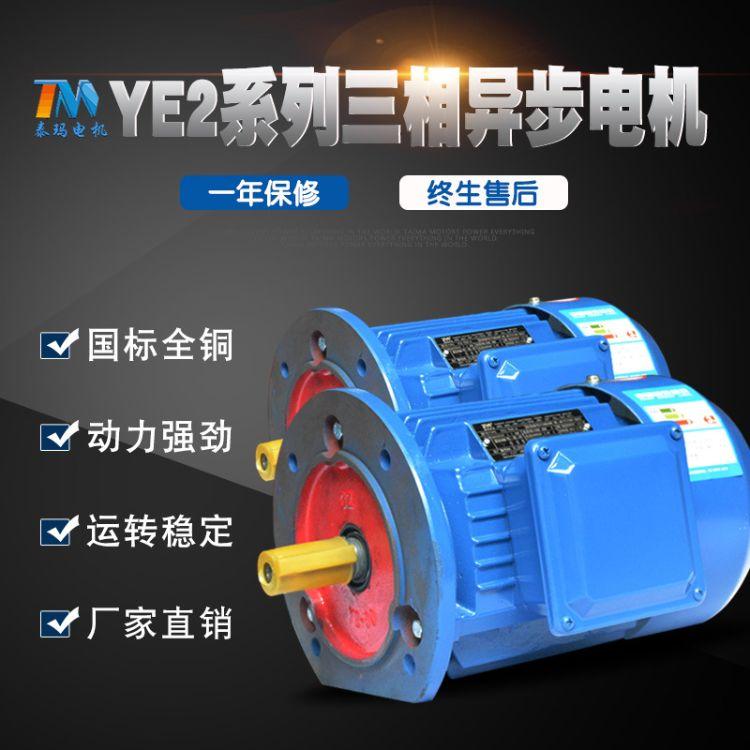 【泰玛】YE2三相异步电动机 4级全新国标大厂出品