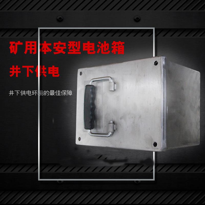 廠家直銷煤礦本安防爆電池箱體積小容量大DXH1012煤礦防爆電池箱