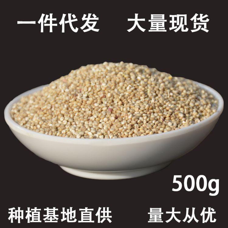 谷麦郎-500g藜麦批发 营养白红黑藜麦米 白藜麦 五谷杂粮黎麦厂
