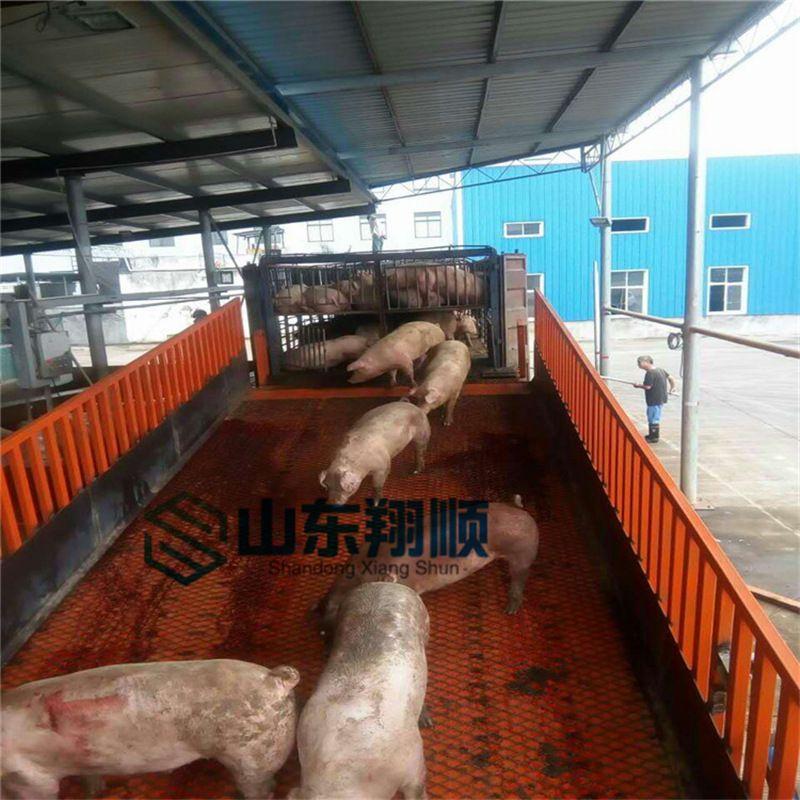 厂家直销农场卸猪台 牲畜卸货台 固定卸货平台 屠宰场卸货平台