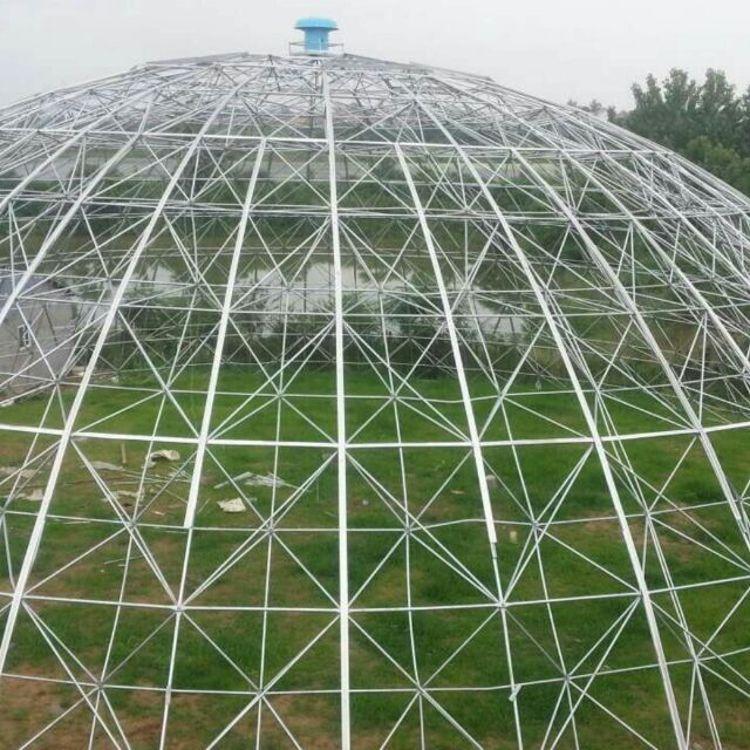 立体农业厂家供应 专业设计球形温室大棚骨架 鸟巢温室大棚骨架热镀锌钢