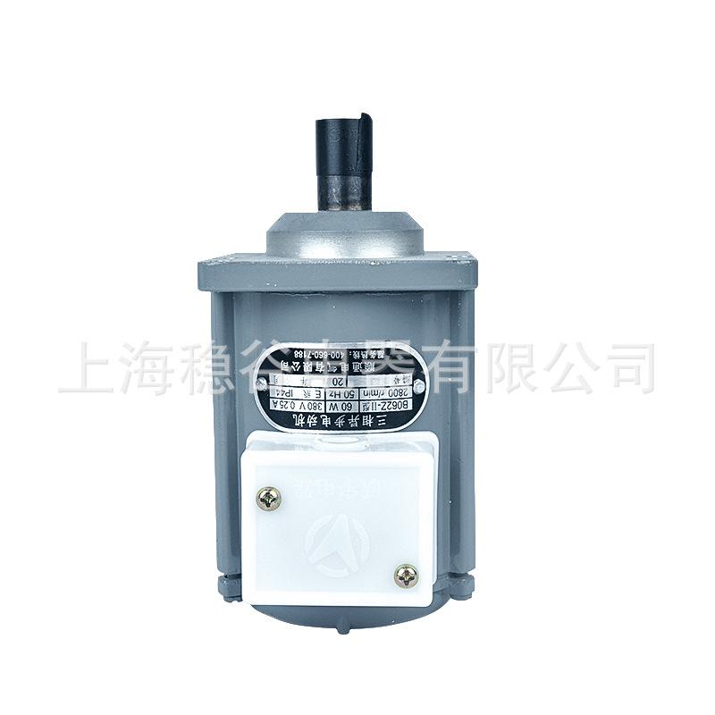 ASF82A微型电机120W异步电动机60W/80W/100W/140W/250W/400W可选