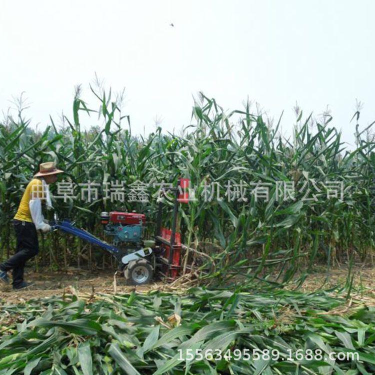 牧草芦苇割晒机 多功能汽油割晒机 牧草收割机 柳条收割机价格