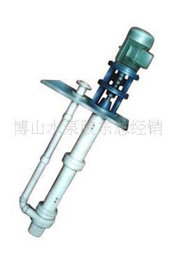 FSB液下泵 博山DYWS系列衬氟耐腐蚀液下水泵