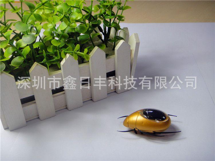 厂家直销新款太阳能玩具,太阳能金龟子