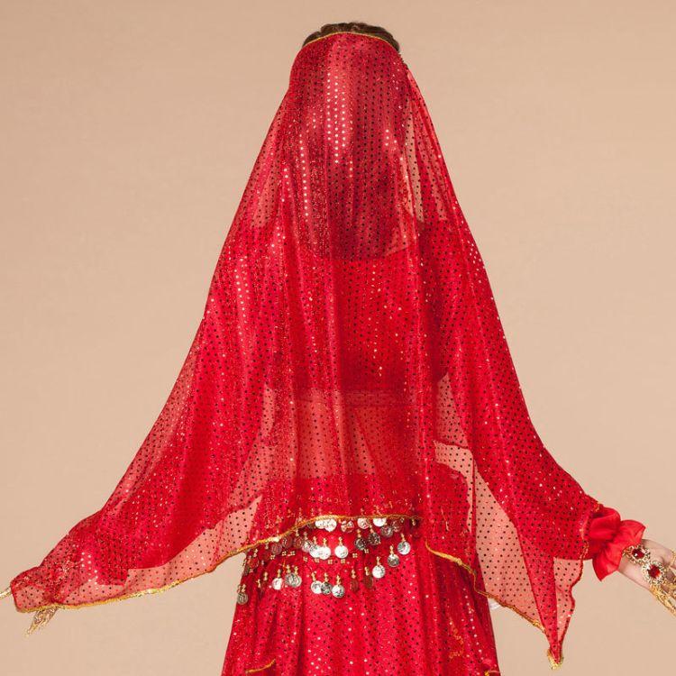 供应批发肚皮舞印度舞蹈演出优雅头纱 舞蹈表演服亮片高档练习服