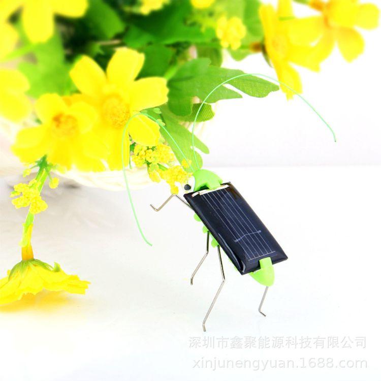 跨境专供太阳能玩具蚂蚱diy创意昆虫整蛊益智科教实验儿童玩偶
