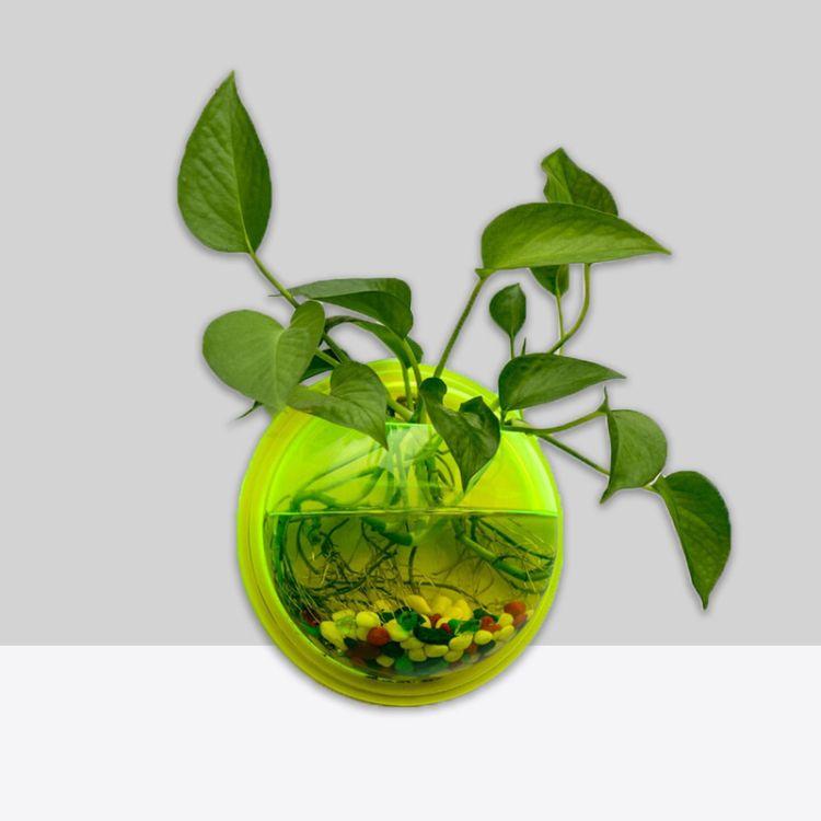 现货荧光绿小号鱼缸壁挂绿萝半圆花瓶吊兰花瓶水培花瓶