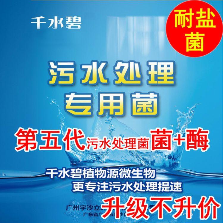 千水碧耐盐菌 抗盐菌 高含盐有机废水专用菌 第五代 污水处理菌种1000g