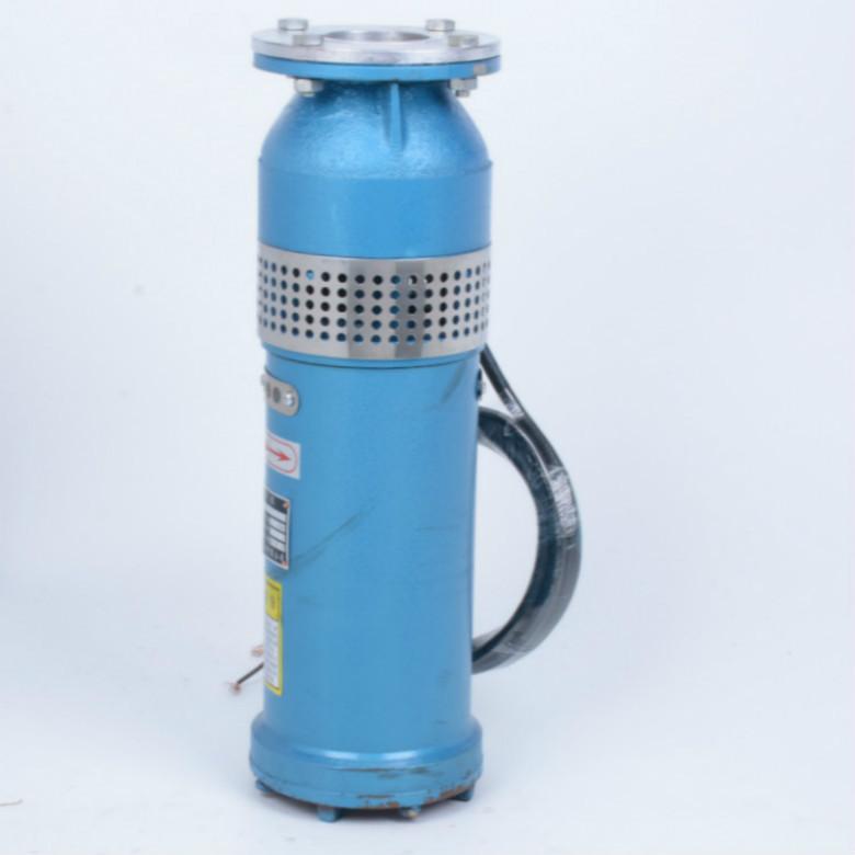 不锈钢潜水电泵 QSP水浸式 喷泉泵 电动潜水泵 杭州昕科泵业