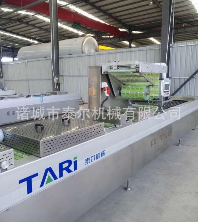 520鳕鱼全自动拉伸膜真空包装机 供应肉食品连续真空包装机