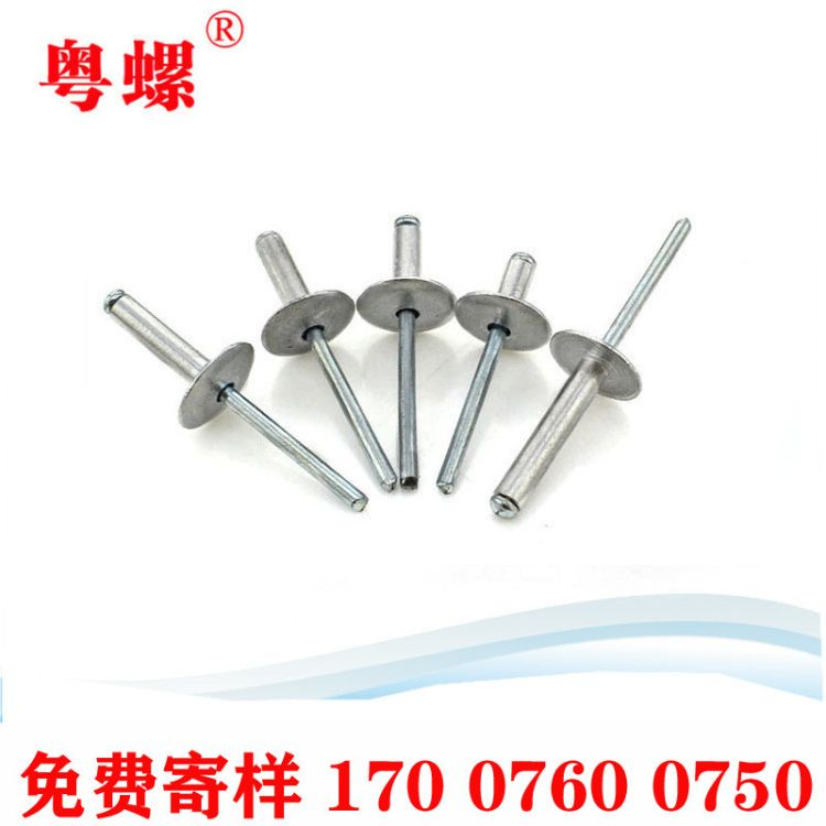 深圳封闭型扁圆头抽芯铆钉11级 GB/T12615 生产