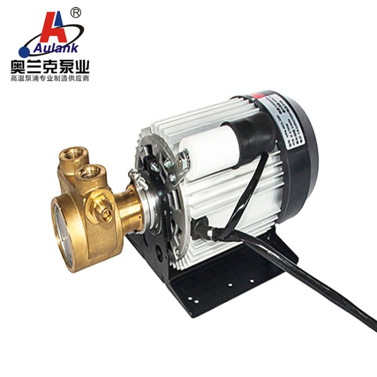 意大利咖啡机热水循环泵fluid-oteh铸铜120W水循环叶片泵