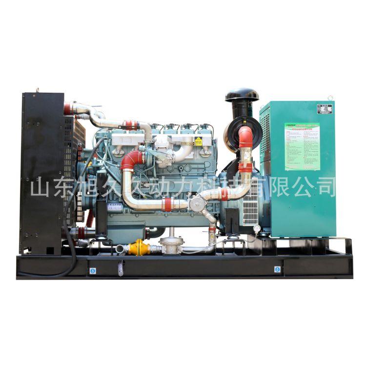 100KW重汽天然气发电机组 天然气沼气通用 环保节能发电机组
