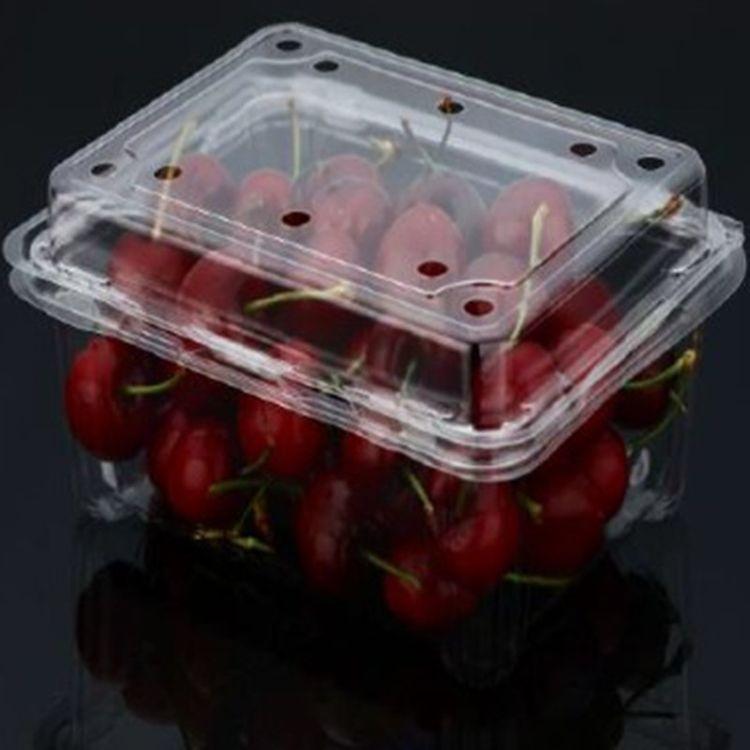鼎信包装 专业好品质蔬菜水果盒托盘价格优惠 生产销售蔬菜水果盒质量好 诚信为本