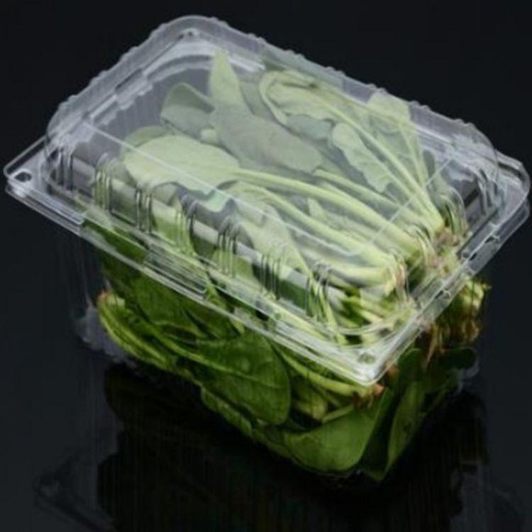 鼎信包装 现货直销环保蔬菜包装盒批 蔬菜水果盒专业生产厂家现货供应 欢迎选购