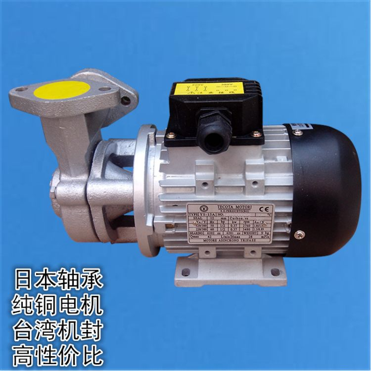 YS-15A模温机水泵 台湾元欣高温水泵 高温循环泵 高温木川泵
