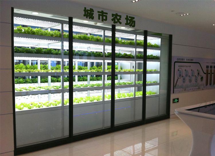 佳培科技 igrowths 定制款 植物工厂 水培设备 智能果蔬种植