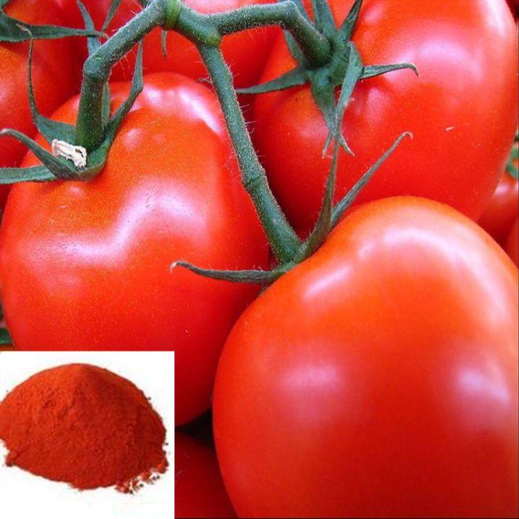大量供应 番茄红色素 天然食用色素 饮料糕点面制品染色用添加剂