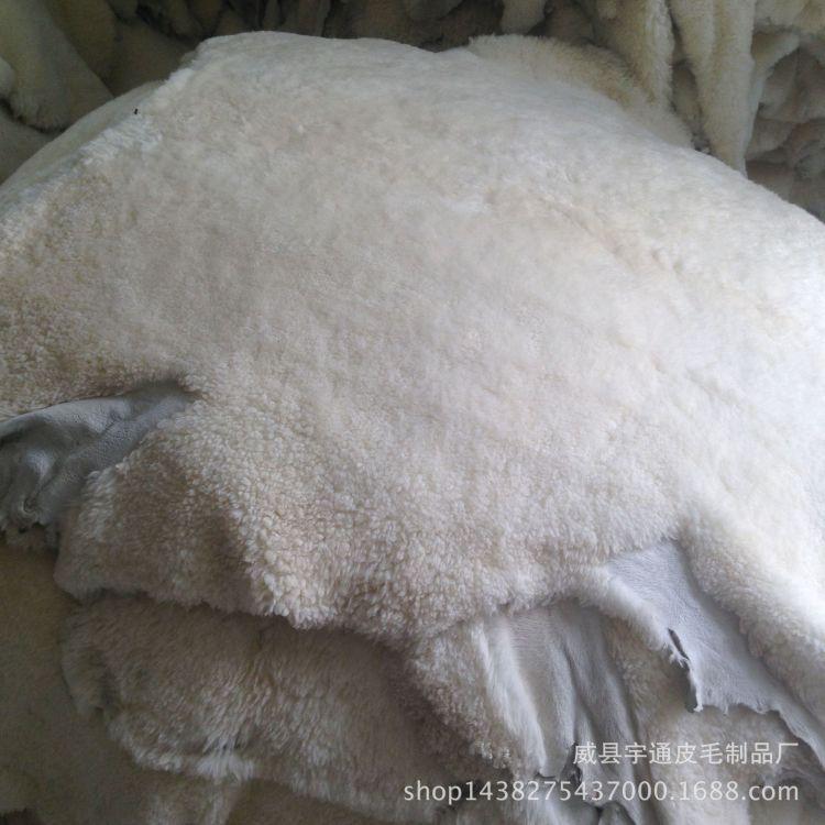 厂家定做批发澳洲羊剪绒服装鞋里帽子材料用皮皮毛一体量大优惠
